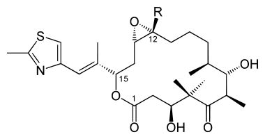 380px-Epothilone_A_B